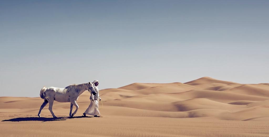 Urlaub_Dubai2_Galeriebilder